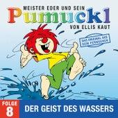 08: Der Geist des Wasser (Das Original aus dem Fernsehen) von Pumuckl