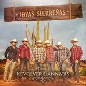 Joyas Sierreñas Con Revolver Cannabis by Revolver Cannabis