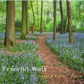 A Peaceful Walk by Jonathan Sarta