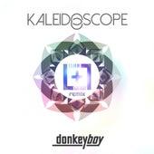 Kaleidoscope (Lliam + Latroit remix) by Donkeyboy