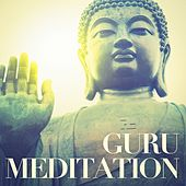 Guru Meditation by Various Artists