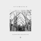 Do It Again (feat. Travis Greene & Kierra Sheard) von Elevation Collective