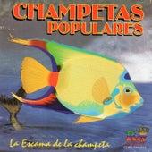 Champetas Populares: La Escama de la Champeta by Various Artists