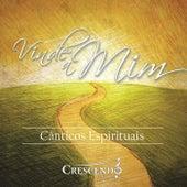 Vinde a Mim by Various Artists