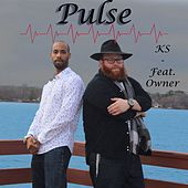Pulse (feat. Owner) by KS