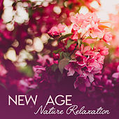 New Age Nature Relaxation de Sounds Of Nature