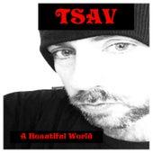 A Beautiful World by Tsav