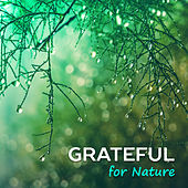 Grateful for Nature de Nature Sounds Artists
