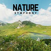 Nature Symphony by Various Artists