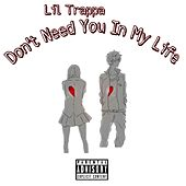 Don't Need You in My Life by Lil Trappa
