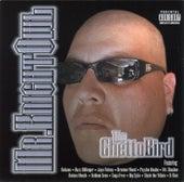 Ghetto Bird by Knightowl