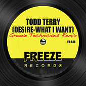 Desire (What I Want) [Groove Technicians Remix] by Todd Terry