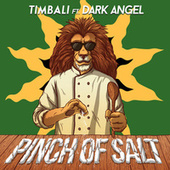 Pinch of Salt EP by Timbali