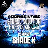 Stereo Solution & Bass Is Kicking Remixes - Single von Aggresivnes