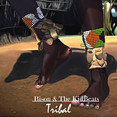 Tribal by Bison