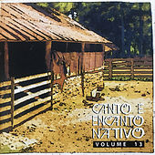 Canto e Encanto Nativo, Vol. 13 by Various Artists