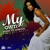 My Own (Remix) de Samini