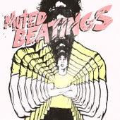 Muted Beatings by Albert Hammond Jr.