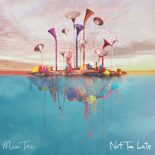 Not Too Late von Moon Taxi