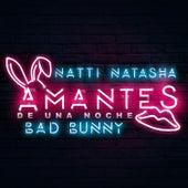 Amantes de una Noche by Bad Bunny