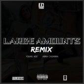 Large Amounts (Remix) [feat. young adz & Abra Cadabra] de D-Block Europe