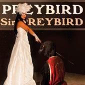 Sir Preybird by Preybird