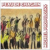 Peau de chagrin by Michel Propilosky