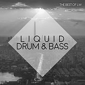 Best of LW Liquid Drum & Bass II - EP by Various Artists