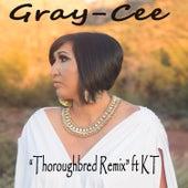Thoroughbred von Gray-Cee
