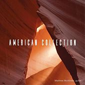 American Collection de Various Artists
