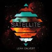 Satellite by Leah Calvert
