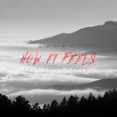 How it Feels (feat. Peter Schaw) von Slinz