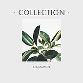 Collection by Benjammin