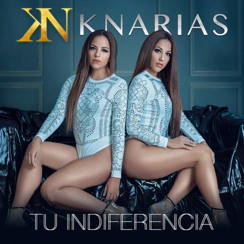 Tu Indiferencia de K-Narias
