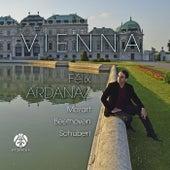 Vienna by Félix Ardanaz