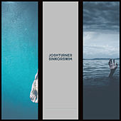 Sink Or Swim by Josh Turner