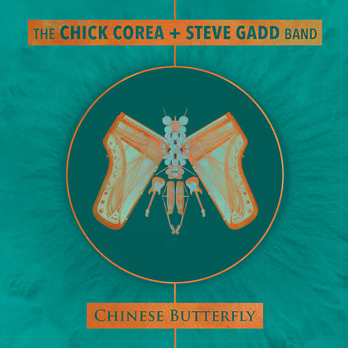 Chinese Butterfly by Steve Gadd