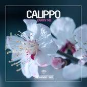 Carry Me von Calippo