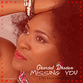 Missing You by Chardel Rhoden