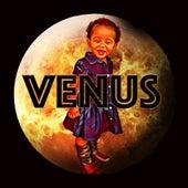 Venus de De Boss(Young Money)