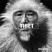 Tibet by Carlos Mendes