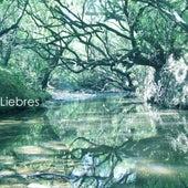 El Arroyo de la Miel de Las Liebres