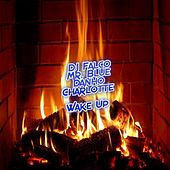Wake Up (feat. Mr. Blue, Charlotte and Danho) by DJ Falco