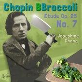 Chopin's Etude Op. 25, No. 7 de Josephine Chang