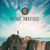 15 Nature Ambience by Calming Sounds