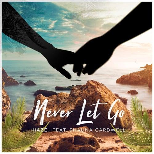 Never Let Go (feat. Shauna Cardwell) de Haze
