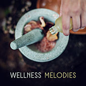 Wellness Melodies de Zen Meditation and Natural White Noise and New Age Deep Massage