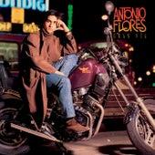 Gran Via de Antonio Flores