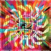 Earthbeat de Various Artists