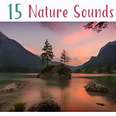 15 Nature Sounds by Nature Sounds (1)